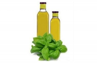 Scented oil with basil